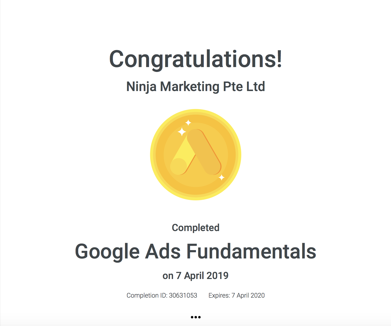 Ninja Marketing - Google Ads Fundamental Achievement Award