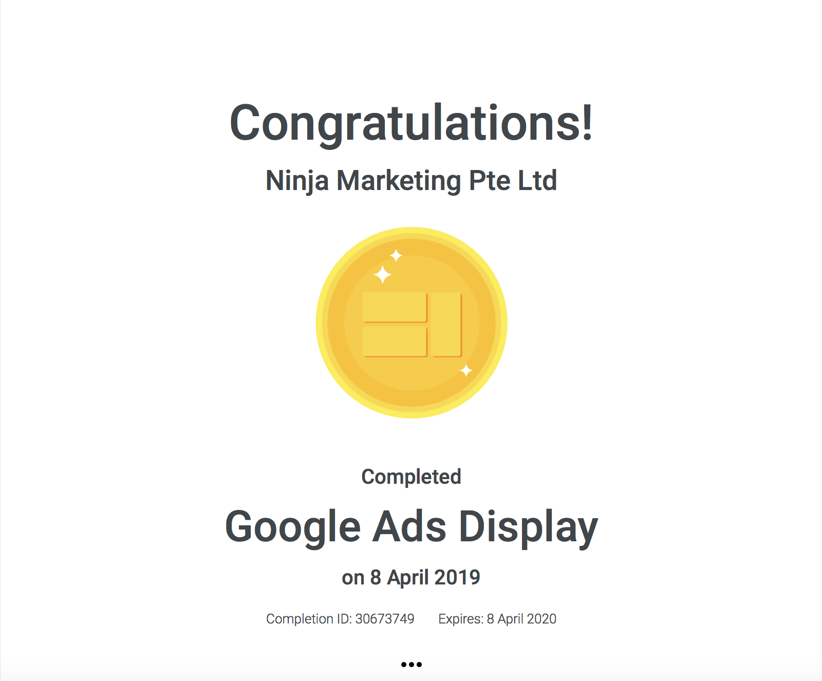 Ninja Marketing - Google Ads Display Achievement Award
